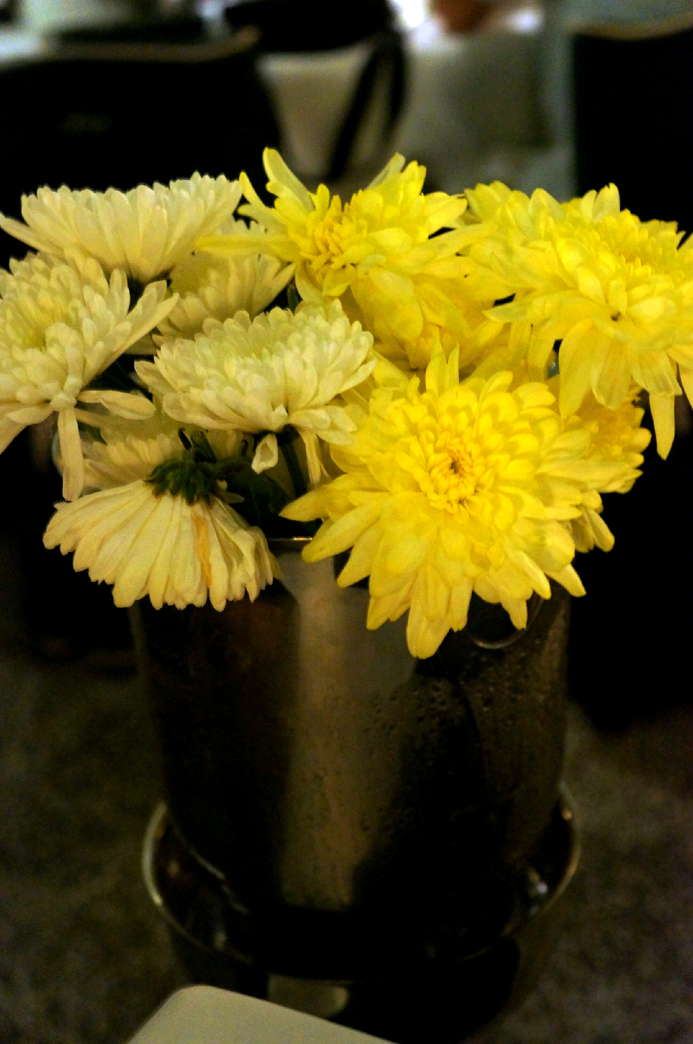 cveće u kibli